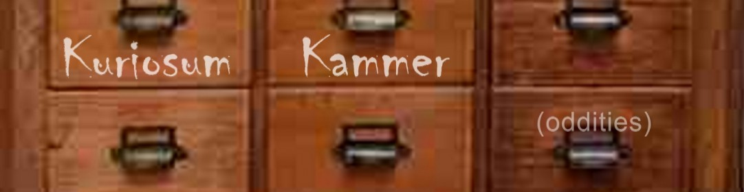 Kuriosum Kammer